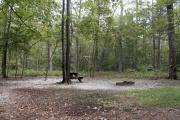 Photo: 010, E WALK IN TENT SITES